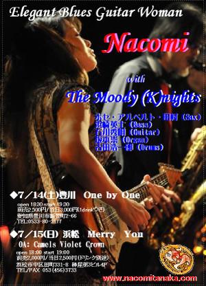 Hamamatsu2012_3
